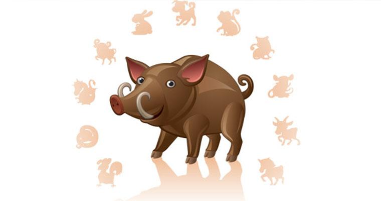 Характеристика года Свиньи