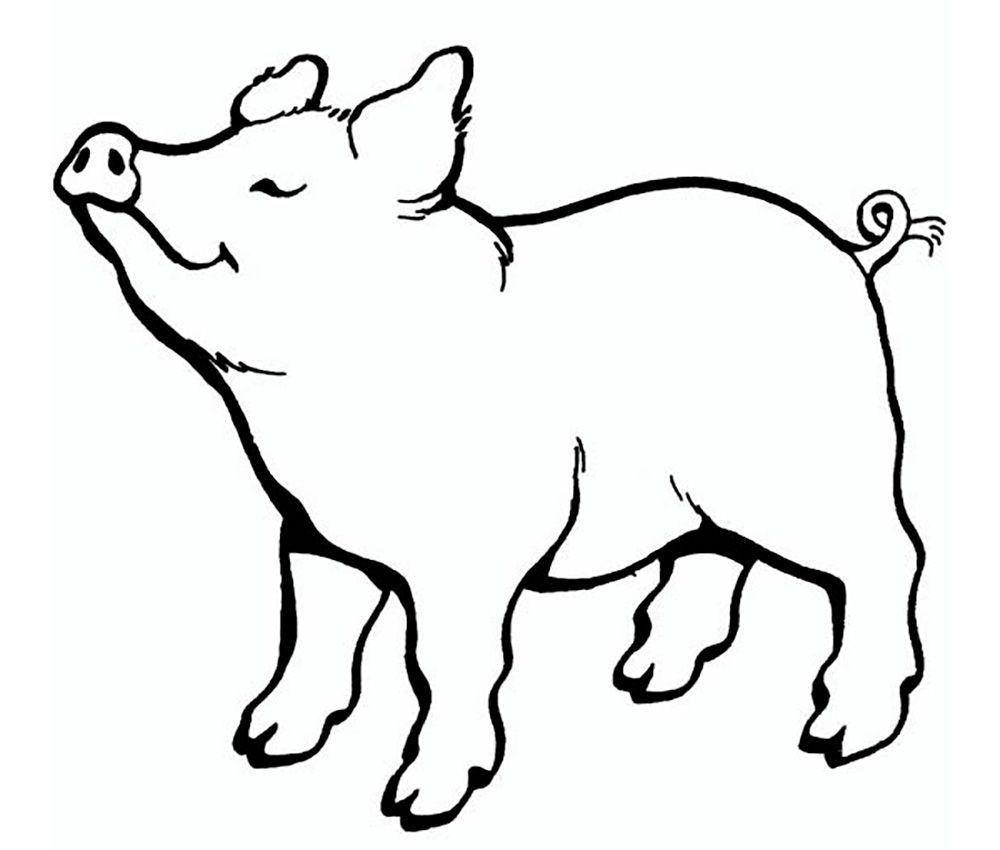 свинка для вырезания